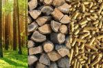 Dlaczego kupujemy biomasę za granicą